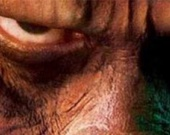 """20th Century Fox отказалась от """"Восстания обезьян"""""""